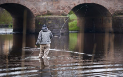 Fishing in Varnamo on Lagan river for free