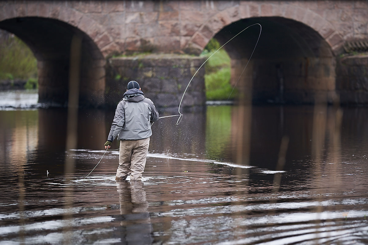 Fishing in Lagan river in Varnamo for free